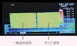 ガイナの温度適応能力実験写真01