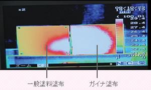 ガイナの温度適応能力実験写真02